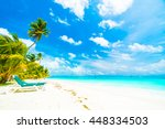 beautiful tropical beach and... | Shutterstock . vector #448334503