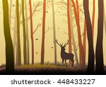 Silhouette Of A Deer In The...
