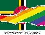 a flag illustration of the... | Shutterstock .eps vector #448790557