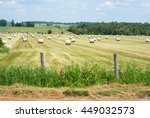 Hay Bales In A Grass Field