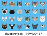 cat breeds  set  vector... | Shutterstock .eps vector #449400487