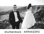 beautiful bride and groom... | Shutterstock . vector #449443393