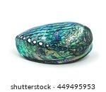 close up  green abalone shell... | Shutterstock . vector #449495953