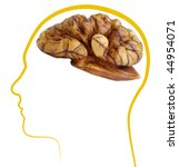walnut good brain health | Shutterstock . vector #44954071