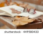 autumn still life on   bench... | Shutterstock . vector #449580433
