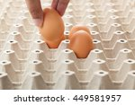 hand picking an egg from egg... | Shutterstock . vector #449581957