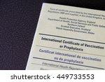 travel health vaccination card... | Shutterstock . vector #449733553