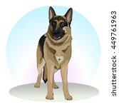 german shepherd. sheepdogs and... | Shutterstock .eps vector #449761963