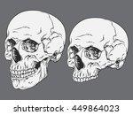 hand drawn line art... | Shutterstock .eps vector #449864023
