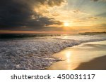 nature of asia  sri lanka.... | Shutterstock . vector #450031117