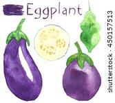 set eggplant. watercolor food.... | Shutterstock . vector #450157513