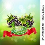 vector background with... | Shutterstock .eps vector #450213637