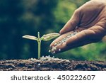 agriculture. growing plants.... | Shutterstock . vector #450222607