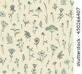 vector hand drawn medicinal... | Shutterstock .eps vector #450266407