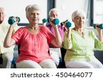 seniors using weights in a