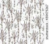 hand drawn sugarcane plants... | Shutterstock .eps vector #450475267
