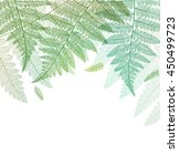 Leaf Background. Fern Leaves...