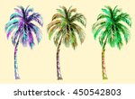 Collection Tropical Palm Trees...