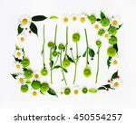 wreath frame from chamomile and ...   Shutterstock . vector #450554257