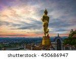 buddha standing on a mountain... | Shutterstock . vector #450686947