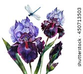 Watercolor Iris Bouquet With A...