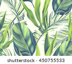 tropical colorful background... | Shutterstock . vector #450755533