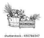 hand drawn vector illustration  ... | Shutterstock .eps vector #450786547