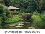Beautiful Garden With Lake And...