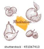 hand drawn illustrations fruits | Shutterstock . vector #451067413