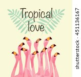 Flamingo Illustration For...