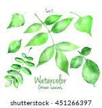 collection of green summer...   Shutterstock . vector #451266397