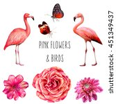 set of pink and red birds ... | Shutterstock . vector #451349437