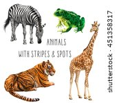 set of animals  zebra  green... | Shutterstock . vector #451358317