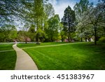 walkway and spring colors at... | Shutterstock . vector #451383967