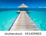 beautiful beach with water... | Shutterstock . vector #451409803
