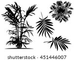 silhouettes of trees tree casts ... | Shutterstock .eps vector #451446007