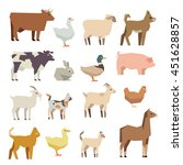 pets and farm animals vector... | Shutterstock .eps vector #451628857