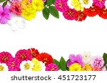 Mix Flowers Frame Isolated On ...