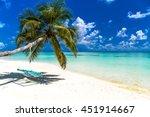 amazing tropical beach. palm...   Shutterstock . vector #451914667