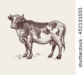 cow. series of farm animals.... | Shutterstock .eps vector #452131033