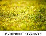 abstract natural background... | Shutterstock . vector #452350867