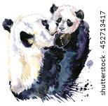Panda. Baby Bear. Panda Bear...