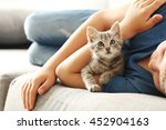 Stock photo child with kitten on grey sofa at home 452904163