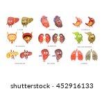 healthy vs sick human organs... | Shutterstock .eps vector #452916133