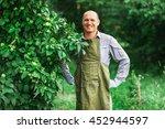 young male gardener working in... | Shutterstock . vector #452944597