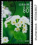 "Small photo of BANGKOK, THAILAND - JULY 07, 2016: A stamp printed in Japan shows Umbrella leaf white flower, series ""Afforestation Gifu"", circa 2006."
