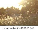 blurred golden background. | Shutterstock . vector #453531343