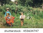 the little girls gardener... | Shutterstock . vector #453634747