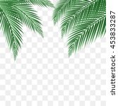 Palm Leaves Vector Background.