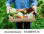 the farmer holds in his hands a ... | Shutterstock . vector #453889573